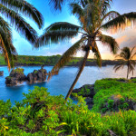Can I manage a rental property I own if I reside outside of Hawaii?