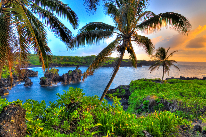 Q: Can I manage a rental property I own if I reside outside of Hawaii?